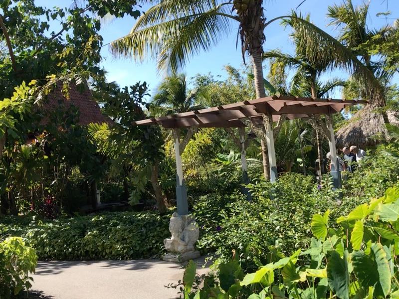 Hermoso lugar en Jardín Botánico de Naples Florida