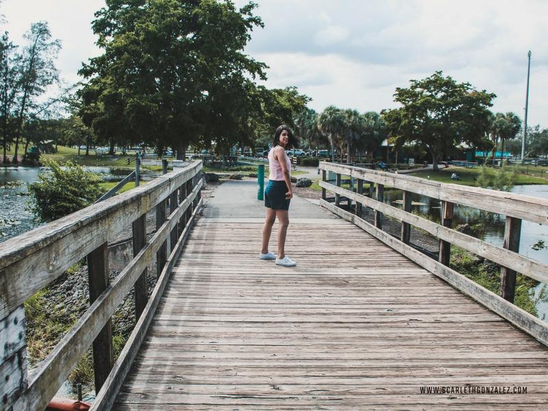 Bosque encantado: Amelia Earhart Park